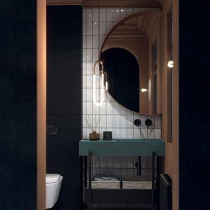 Eklektyczne wnętrze toalety dla gości zaprojektował Patryk Zalewski. Projekt Patryk Zalewski