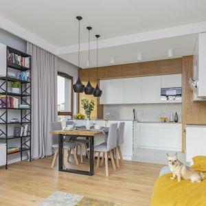 Salon z małą jadalnią. Projekt i zdjęcia: Renata Blaźniak-Kuczyńska, Renee's Interior Design