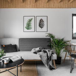 Ścianę za kanapą zdobią minimalistyczne obrazki. Projekt Raca Architekci. Fot. Fotomohito