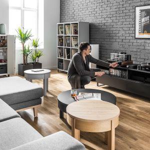 Meble do nowoczesnego salonu z kolekcji Balance dostępne w ofercie firmy Vox. Cena: ok. 570 zł (szafka pod telewizor). Fot. Vox