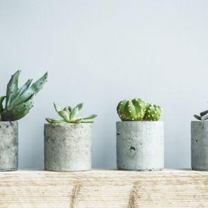 Przy pomocy betonu dekoracyjnego można zrobić wazon na świeże kwiaty, doniczkę na zioła, półmisek na owoce, świecznik, wazę, a nawet mały stolik – beton dekoracyjny świetnie sprawdzi się wtedy, gdy chcemy zrobić odlew innego przedmiotu. Fot. Ultrament