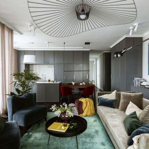 W salonie podstawowym meblem powinna być duża i wygodna kanapa, idealna na spotkania z przyjaciółmi i rodziną. Projekt Katarzyna Arsenowicz. Fot. Yassen Hristov (Hompics)