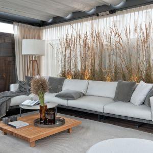 Dzięki imponującym pióropuszom pozwala na odświeżenie wnętrza i stworzenie kompozycji wprowadzających jesienną aurę do salonu - bez obaw o trwałość rośliny. Projekt Katarzyna Kraszewska. Fot. Tom Kurek