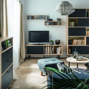 Drewniane meble z czarnymi frontami podkreślą nowoczesny charakter salonu. Na zdj. Frame Vox