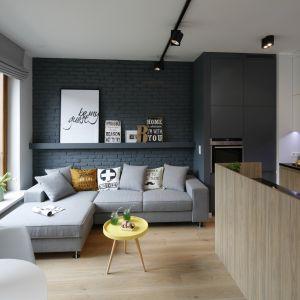 Ścianę za kanapą w salonie zdobi cegła pomalowana na kolor antracytowy. Projekt Ola Kołodziej, Ula Szmyt. Fot. Bartosz Jarosz