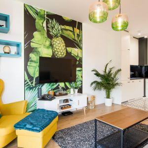 Mały salon z kuchnią w kolorze. Projekt THE SPACE Foto Piotr Czaja