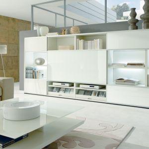 Białe meble do salonu z kolekcji Mega Design dostępne w ofercie firmy Huelsta. Fot. Huelsta