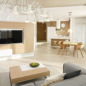 Ścianę za telewizorem w salonie wykończono białą farbą połączoną z drewnem. Drewniane fronty skrywają pojemne szafki. Projekt: Maciej Brzostek. Fot. Bartosz Jarosz