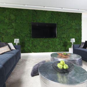 Na ścianie za telewizorem w nowoczesnym salonie zdobi naturalny mech. Projekt: Dariusz Grabowski. Fot. Bartosz Jarosz