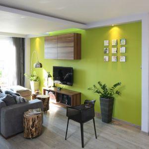 Na ścianie za telewizorem wykończono zielonym, soczystym kolorem, który ożywia szaro-białe wnętrze salonu. Projekt: Arkadiusz Grzędzicki. Fot. Bartosz Jarosz