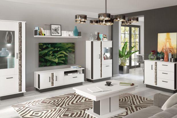 Białe meble to świetny pomysł do nowoczesnego salonu. Są ponadczasowe, modne i pięknie wyglądają. Jeśli wybierzeciemeble pasujące do całej aranżacji staną się prawdziwą ozdobą salonu.
