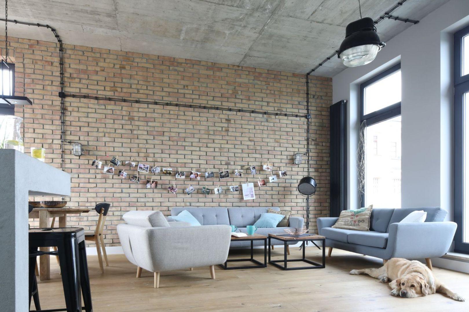 Beżowa cegła na ścianie z kanapą w salonie. Projekt Maciejka Peszyńska-Drews. Fot. Bartosz Jarosz