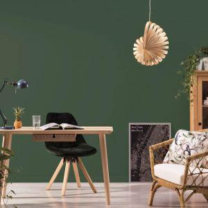 Butelkowa zieleń na ścianie w salonie. Na zdjęciu farba Beckers Designer Collection, kolor Herbarium. Fot. Beckers