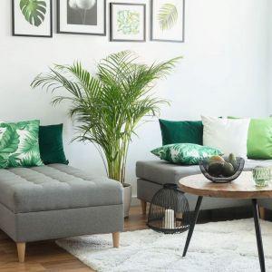 Butelkowa zieleń w postaci dodatków z motywem roślinnym w salonie. Poszewka Kinga na poduszkę z kolekcji Urban Jungle. Fot. Dekoria