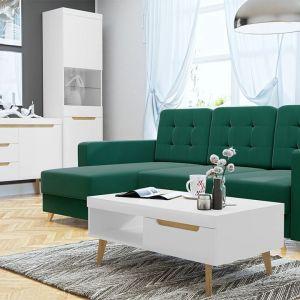 Meble do nowoczesnego salonu z kolekcji Nirus dostępne w ofercie firmy Mirjan24. Fot. Mirjan24