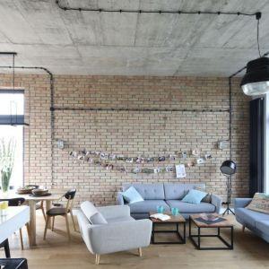 Ściana za kanapą w salonie wykończona cegłą. Projekt: Maciejka Peszyńska-Drews. Fot. Bartosz Jarosz