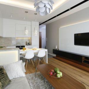 Szafka pod telewizor w salonie jest bardzo elegancka. Zapewnia sporą przestrzeń na przechowywanie. Projekt Agnieszka Hajdas-Obajtek