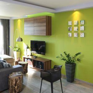 Ścianę za telewizorem wykończono zielonym kolorem, który ożywia salon urządzony w bieli i w szarościach. Projekt: Arkadiusz Grzędzicki. Fot. Bartosz Jarosz