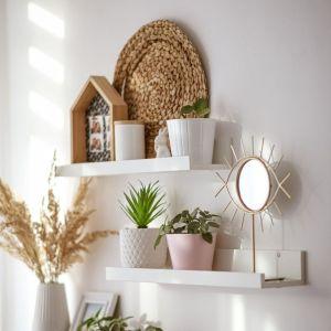 Prezent dla miłośnika roślin. Fot. mat. prasowe Comforteo