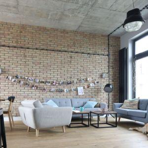 Ściana za kanapą w salonie została wykończona cegłą w jasnym kolorze. Projekt Maciejka Peszyńska-Drews. Fot. Bartosz Jarosz