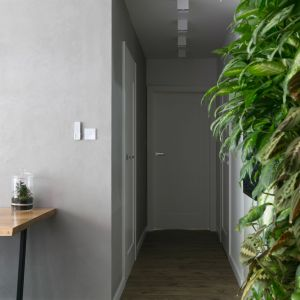 Zielona ściana to największa ozdoba wnętrza. Projekt wnętrza: Paulina Zwolak i Jakub Nieć z pracowni Projektyw. Zdjęcia: Jakub Dziedzic