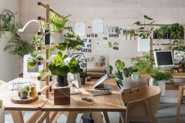 Home office to rzeczywistość wielu z nas. O czym wiedzieć urządzając lub poprawiając nasze domowe biuro? Przeczytajcie!