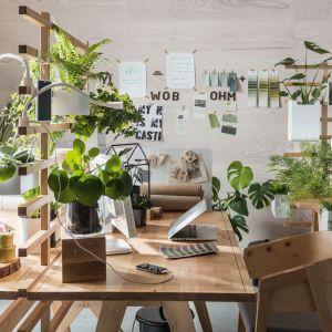 Worknest - pomysł na domowe biuro od marki VOX. Bazę stanowi drewniany stół z parawanem, który zyskuje dodatkowe możliwości wraz z dokładaniem do niego akcesoriów. Fot. Worknest Vox