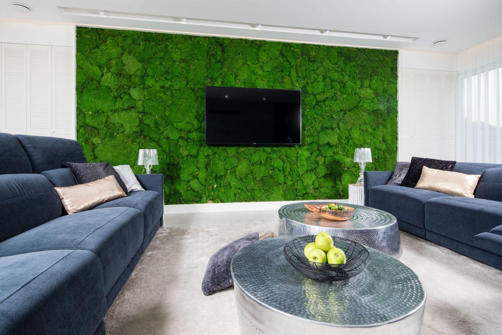 Zielona ściana za telewizorem. Projekt Dariusz Grabowski. Fot. Bartosz Jarosz