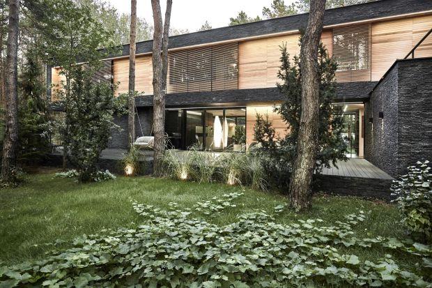 Te domy są świetne! 5 najlepszych projektów 2020 roku