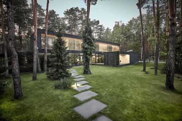 Kamienna elewacja domu zaprojektowanego przez pracownię 81waw.pl nawiązuje do ciemnych pni sosen, które rosną na tym terenie. Natomiast wrażenie masywności czarnej bryły minimalizują wnęki, które zostały wykończone jasnym drewnem.