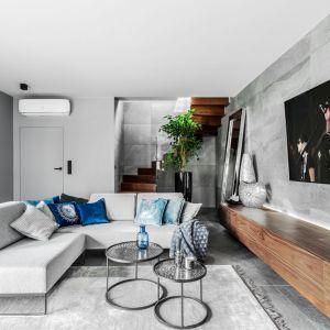 Szary salon urządzono został w nowoczesnym stylu. Jest jasny i przestronny. Projekt: Agnieszka Morawiec. Fot. Anna Laskowska / Dekorialove