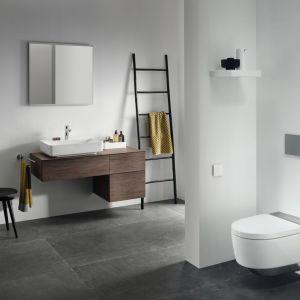 Obecnie oczekujemy, że producenci zaoferują nam rozwiązania gwarantujące w łazience absolutną higienę i poczucie świeżości. Prawie każdy element wyposażenia łazienki jest obecnie projektowany tak, by zapewniał czystość. Fot. Geberit