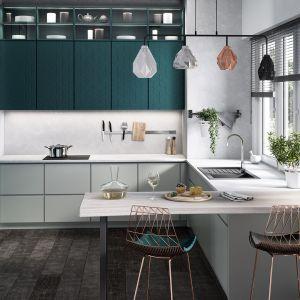 Kolor szary w kuchni idealnie współgra z wszystkimi odcieniami, w tym także ze szlachetnymi zieleniami. Fot. Ferro