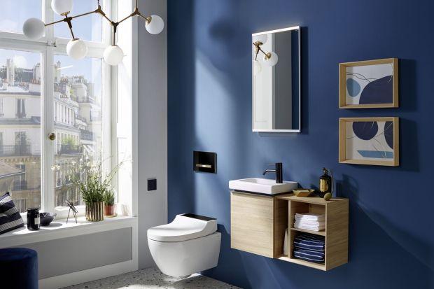 Łazienka jest miejscem, które powinno być przede wszystkim funkcjonalne, ale także przyjemne i relaksujące dla naszych zmysłów. Połączenie tych potrzeb dla wielu z nas wciąż stanowi duże wyzwanie, dlatego jeśli planujemy urządzenie lub remon
