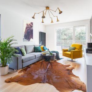 Szara sofa w salonie Projekt gama design współ Joanna Rej fot Pion Poziom