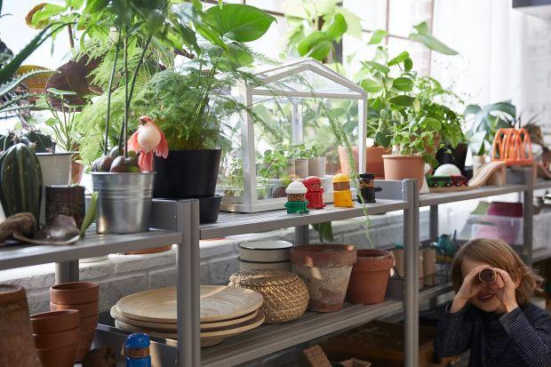 Nie musisz mieć własnego ogródka by mieć świeże warzywa, zioła czy kwiaty. Dziękitym wynalazkomnawet w bardzo małym mieszkaniu można cieszyć się zielonymi roślinami przez cały rok.