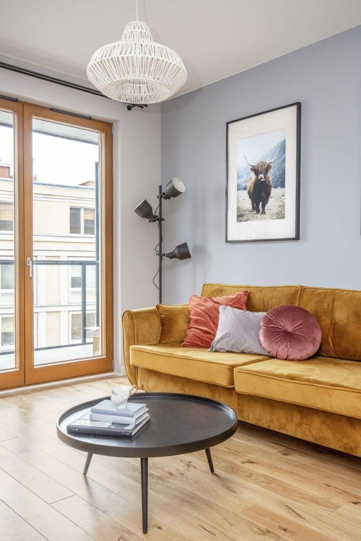 Welurowa sofa dodaje koloru w salonie. Projekt: Ewa Dziurska, Katarzyna Domańska, Decoroom. Fot. Marta Behling, Pion Poziom – fotografia wnętrz