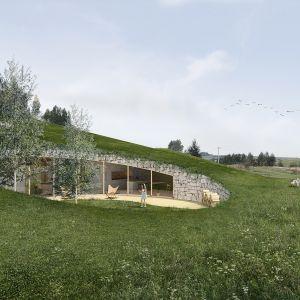 Zielony dach pokryty lokalną roślinnością. Projekt: Adrian Kasperski Architekt