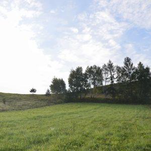 Zdjęcia z wizji lokalnej: widok działki oraz widok z działki w kierunku Dolinek Krakowskich. Fot. Adrian Kasperski Architekt