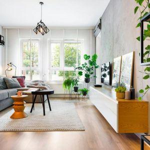 Salon udekorowany domowymi roślinami, wśród których króluje monstera. Projekt: Krystyna Dziewanowska, Red Cube Design. Zdjęcia: Mateusz Torbus, 7TH IDEA