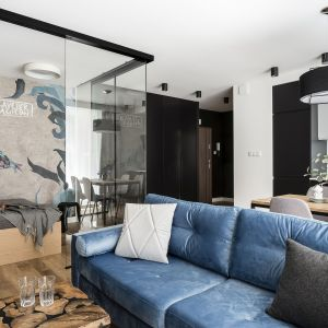 Niebieska aksamitna sofa w salonie. Projekt Anna Maria Sokołowska. Fot. FotoMohito