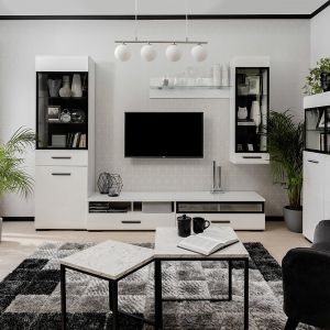Meble do salonu: kolekcja Assen - prosta stylistyka mebli sprawdzi się w nowoczesnym salonie. Producent: Black Red White