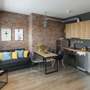 Strefę dzienną w małym mieszkaniu na wynajem urządzono nowocześnie. Projekt: Katarzyna Moraczewska, Barbara Przasnyska. Fot. Bartosz Jarosz