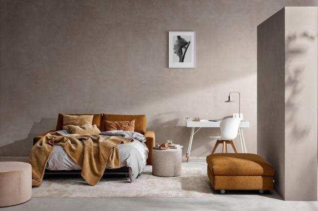 Wielofunkcyjne meble cieszą się coraz większą popularnością. Jednym z nich jest sofa z funkcją spania, towarzysząca nam od wielu lat i nie zawsze budząca pozytywne konotacje.