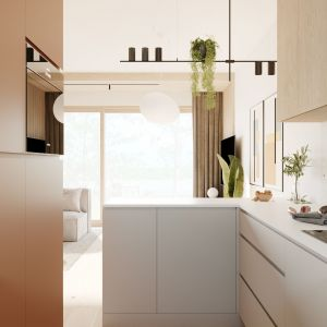 Widok z aneksu kuchennego na salon. Projekt: Sara Tokarczyk i Wojciech Poziomka, Studio Smart Design