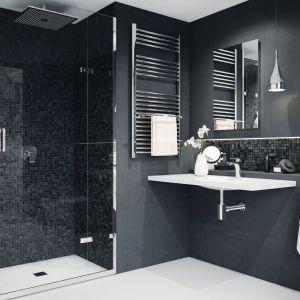 Monochromatyczna łazienka w bieli i szarości wpadającej w grafit. Na zdjęciu m.in. z deszczownica Niagara od Ferro. Fot. Ferro