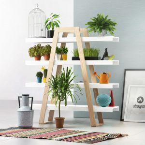 Wiosenne trendy w salonie - pomysł na regał na domowe rośliny. Fot. Galeria Wnętrz Domar