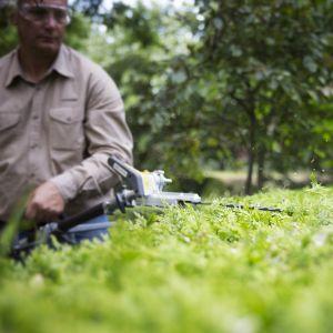Wielofunkcyjnego narzędzie Honda Versatool do przycinania żywopłotów.  Fot. Honda