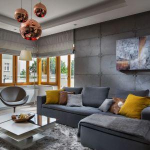 Ściana za kanapą w salonie wykończona jest betonowymi płatami. Projekt: Agnieszka Hajdas-Obajtek. Fot. Wojciech Kic
