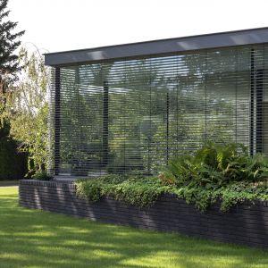 Zielone patio jest częścią otwartej strefy dziennej. Zdjęcia: i29/Ewout Huibers